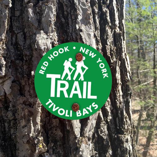 trail_trail-marker